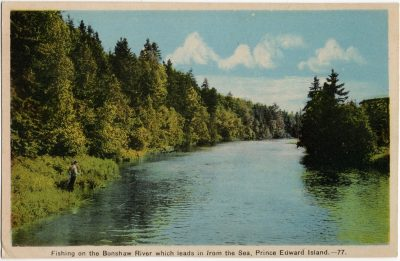, Fishing on the Bonshaw River which leads in from the Sea, Prince Edward Island. (1631), PEI Postcards