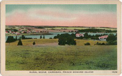 , Rural Scene, Cardigan, Prince Edward Island (1636), PEI Postcards