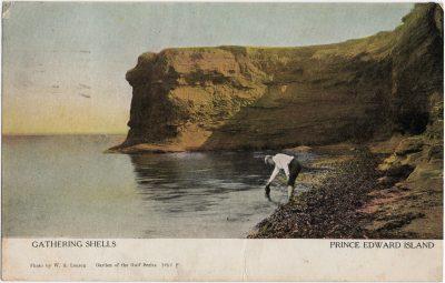 , Gathering Shells Prince Edward Island (1700), PEI Postcards