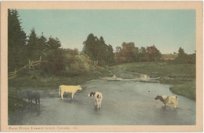 , Rural Prince Edward Island, Canada. (1756), PEI Postcards