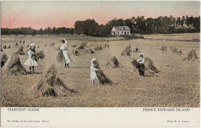 , Harvest Scene Prince Edward Island (1757), PEI Postcards