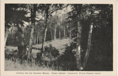 """, Looking into the Haunted Woods, """"Green Gables"""", Cavendish, Prince Edward Island. (1842), PEI Postcards"""