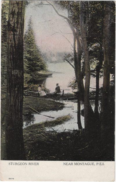 , Sturgeon River Near Montague, P.E.I. (1931), PEI Postcards