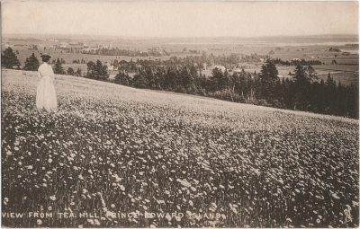 , View from Tea Hill, Prince Edward Island (1963), PEI Postcards