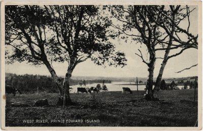 , West River, Prince Edward Island. (1988), PEI Postcards