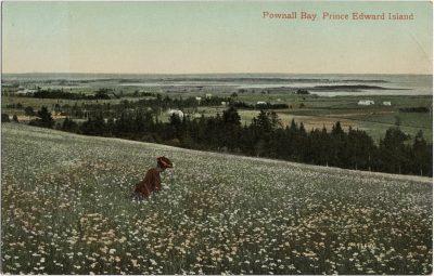 , Pownall Bay, Prince Edward Island (2029), PEI Postcards