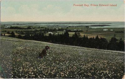 , Pownall Bay, Prince Edward Island (2034), PEI Postcards