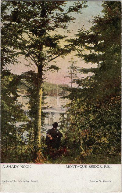 , A Shady Nook Montague Bridge, P.E.I. (2049), PEI Postcards