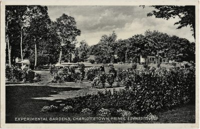 , Experimental Gardens, Charlottetown, Prince Edward Island (2076), PEI Postcards