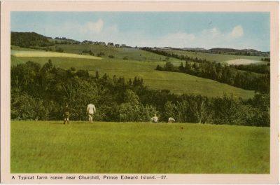 , A Typical farm scene near Churchill, Prince Edward Island. (2103), PEI Postcards