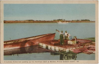 , A Lobster Fisherman packing up his mornings catch at Borden, Prince Edward Island. (2126), PEI Postcards