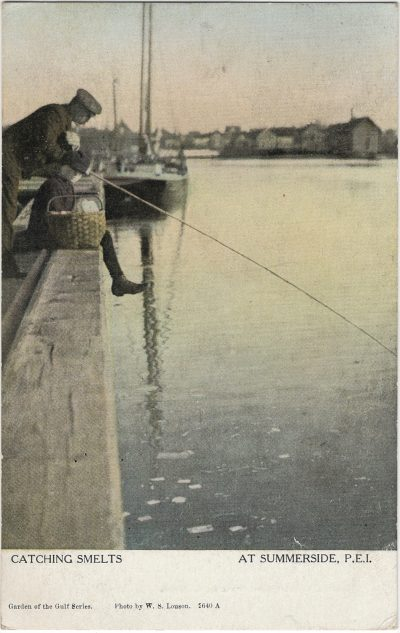 , Catching Smelts at Summerside, P.E.I. (2240), PEI Postcards