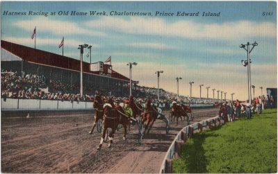 , Harness Racing at Old Home Week, Charlottetown, Prince Edward Island. (2236), PEI Postcards