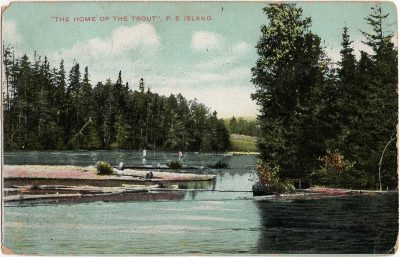 """, """"The Home of the Trout"""", P.E. Island. (2238), PEI Postcards"""