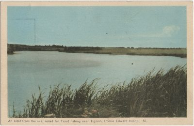, An inlet from the sea, noted for trout fishing near Tignish, Prince Edward Island. (2222), PEI Postcards