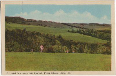 , A typical farm scene near Churchill, Prince Edward Island. (2216), PEI Postcards