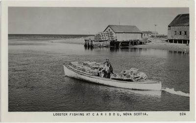 , Lobster Fishing at Caribou, Nova Scotia (2352), PEI Postcards