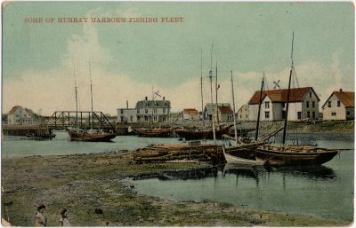, Some of Murray Harbor's Fishing Fleet. (2341), PEI Postcards