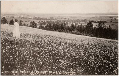 , View from Tea Hill, Prince Edward Island (2308), PEI Postcards