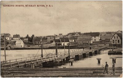 , Looking North, Murray River, P.E.I. (2412), PEI Postcards