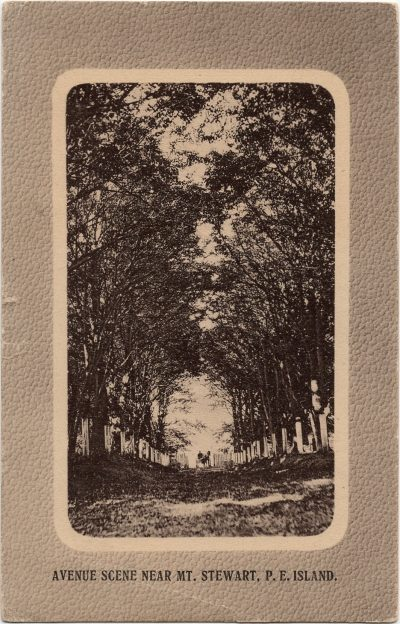 , Avenue Scene Near Mt. Stewart, P.E. Island. (2476), PEI Postcards