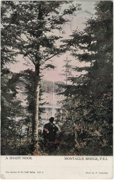 , A Shady Nook Montague Bridge, P.E.I. (2595), PEI Postcards