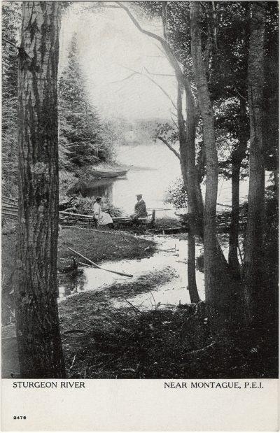 , Sturgeon River Near Montague, P.E.I. (2646), PEI Postcards