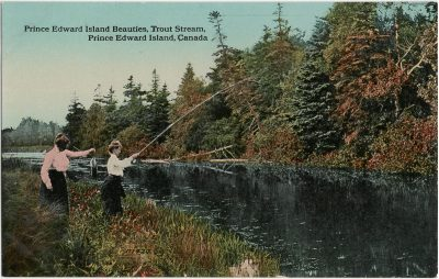 , Prince Edward Island Beauties, Trout Stream, Prince Edward Island, Canada (2643), PEI Postcards