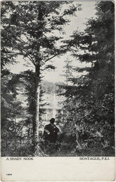 , A Shady Nook Montague, P.E.I. (2638), PEI Postcards