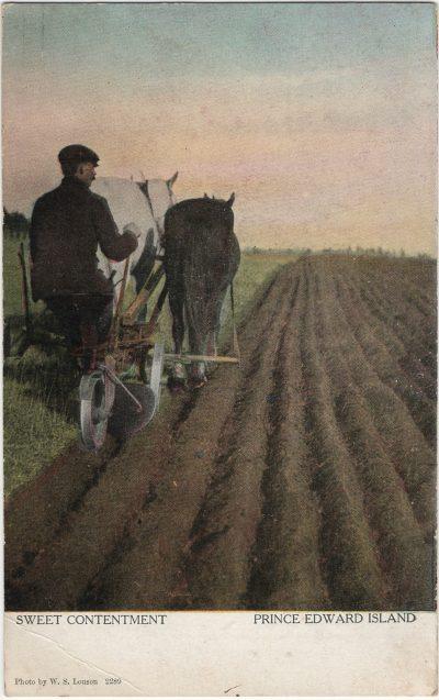 , Sweet Contentment Prince Edward Island (2608), PEI Postcards