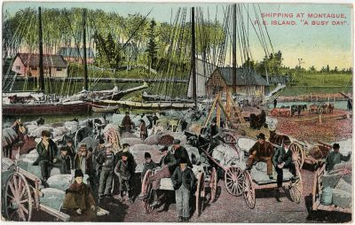 """, Shipping at Montague P.E. Island. """"A Busy Day"""" (2709), PEI Postcards"""