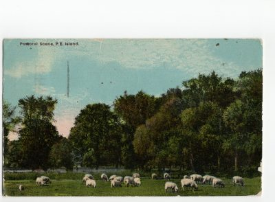 , Pastoral Scene, P.E. Island. (2774), PEI Postcards