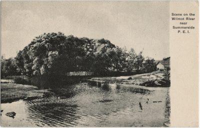 , Scene on the Wilmot River near Summerside, P.E.I. (2780), PEI Postcards