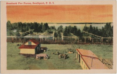 , Rosebank Fur Farms, Southport, P.E.I. (2817), PEI Postcards