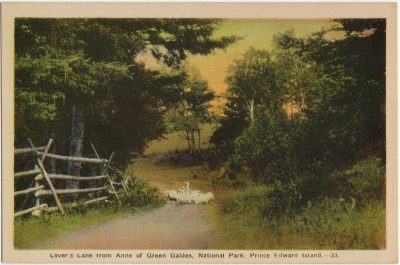 , Lover's Lane from Anne of Green Gables, National Park, Prince Edward Island. (2804), PEI Postcards