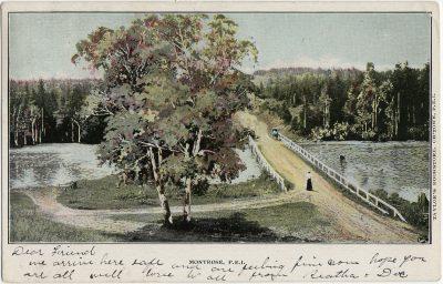 , Montrose, P.E.I. (2877), PEI Postcards