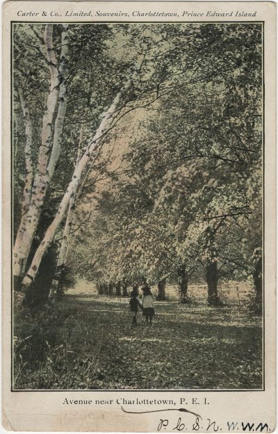 , Avenue near Charlottetown, P.E.I. (2849), PEI Postcards