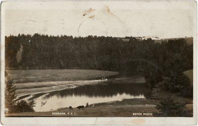 , Bonshaw PEI Bayer Photo (2965), PEI Postcards