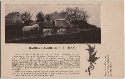 , Roadside Scene in P.E. Island (2936), PEI Postcards