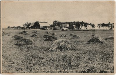 , Farm Scene, P.E. Island (Near Charlottetown). (3039), PEI Postcards