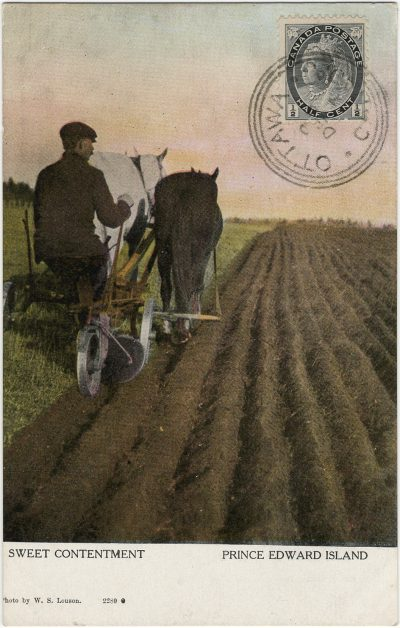 , Sweet Contentment Prince Edward Island (3077), PEI Postcards