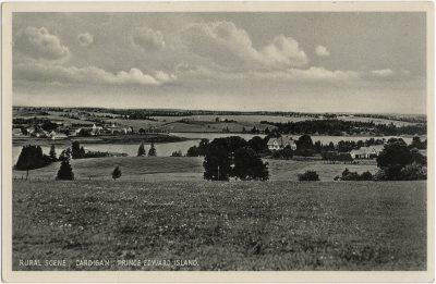 , Rural Scene, Cardigan, Prince Edward Island. (3070), PEI Postcards