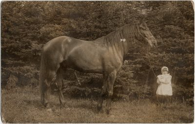, Young girl photographed with horse. (3105), PEI Postcards
