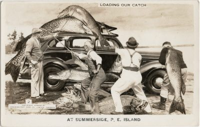 , Loading our Catch at Summerside, P.E. Island (3141), PEI Postcards