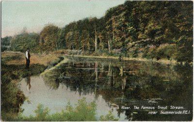 , Dunk River. The Famous Trout Stream near Summerside, P.E.I. (3165), PEI Postcards