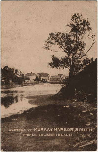 , Glimpse of Murray Harbor, South. Prince Edward Island. (3205), PEI Postcards