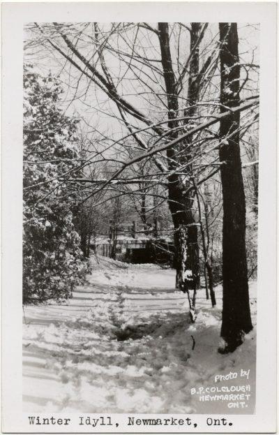 , Winter Idyll, Newmarket, Ont. (3189), PEI Postcards