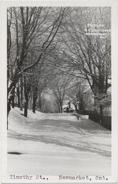, Timothy St. Newmarket, Ont. (3181), PEI Postcards