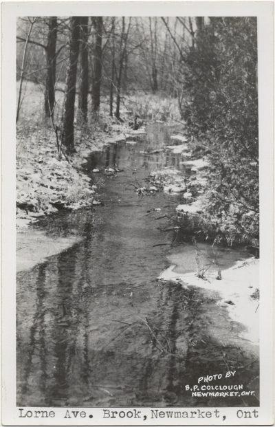 , Lorne Ave. Brook, Newmarket, Ont (3180), PEI Postcards