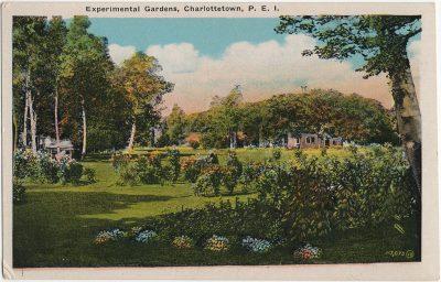 , Experimental Gardens, Charlottetown, P.E.I. (3259), PEI Postcards